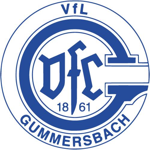 Neuer Sponsor und offizieller Druckpartner vom VfL Gummersbach: Die Kölner Druckerei Häuser KG mit DruckDiscount24.de